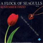 A Flock Of Seagulls - Remember David