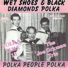 The Joe Grkman Trio - Wet shoes & black diamonds polka