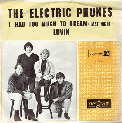 The Electric Prunes - I had too much to dream (last night)
