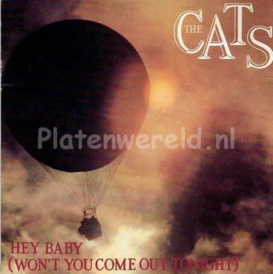 The Cats - Hey Baby (won't you come home out tonight)