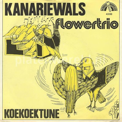 Flower Trio - Kanariewals