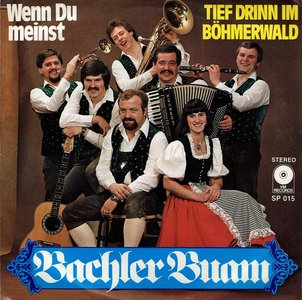Bachler Buam - Wenn du meinst