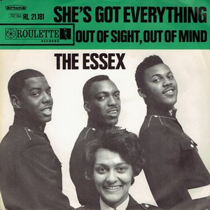 The Essex - She's got everything