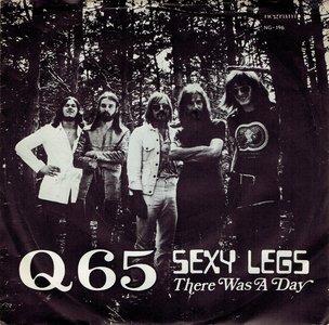 Q65 - Sexy legs