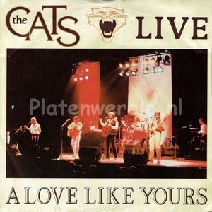 the Cats - Love like yours